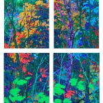 "Gems---Moonlight-in-the-Forest-I-II-III-IV (set of 4) 12 x 9"" each"