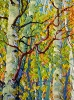 SOLD Gem: Stand of Birches I, oil on canvas by Frank Balaam at a Scottsdale art gallery
