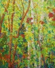 SOLD Stand of Cherry Birches, 56 x 46, Oil on Canvas