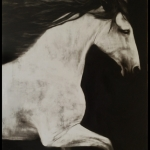 [SOLD] Purity, 60x40, Oil on Panel